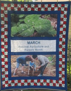 March National Agriculture and Forests Month Quilt